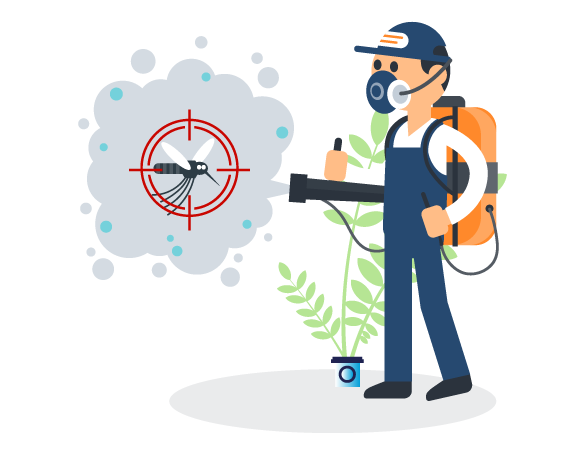 Professional Pest Control Brisbane