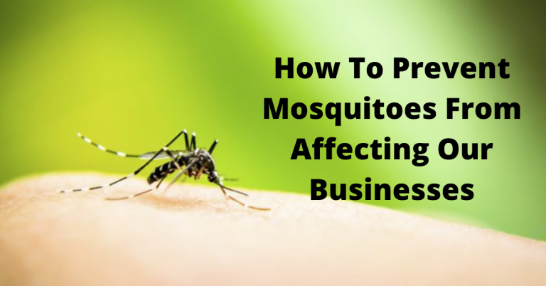 How To Prevent Mosquitoes From Affecting Our Businesses